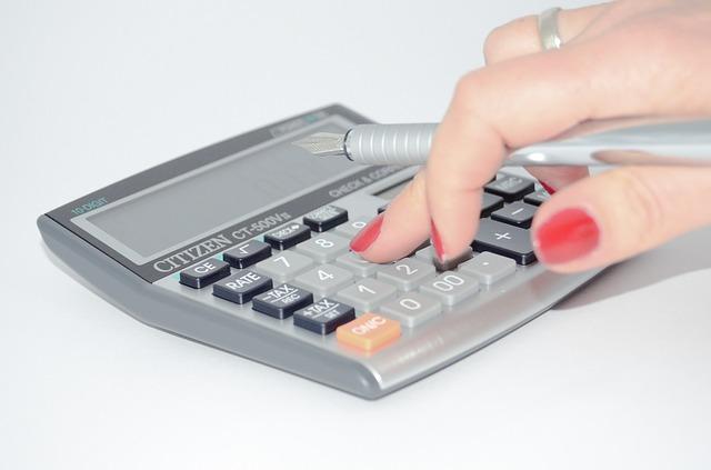 Belastingaangifte Lelystad